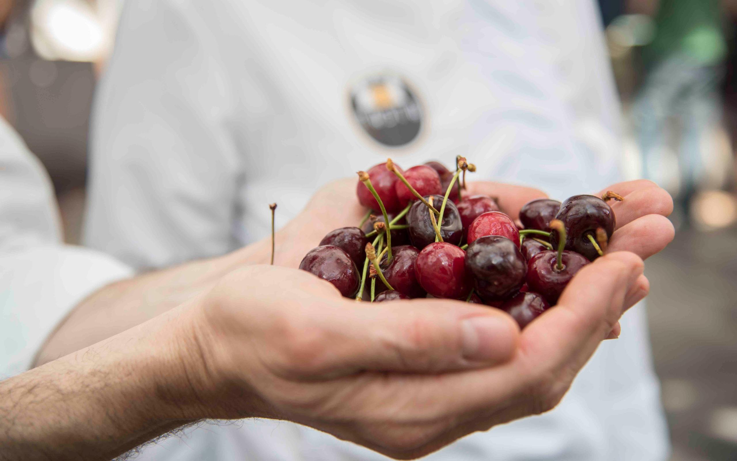 Cherries - ©Giampaolo Mavilia